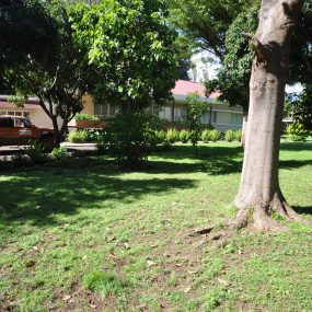 Garden View of the Four Bedroom House for Rent in Corridor Area in Arusha by Tanganyika Estate Agents