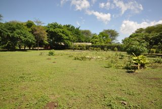 Land of the 3 Bedroom House for Sale West Of Arusha by Tanganyika Estate Agents