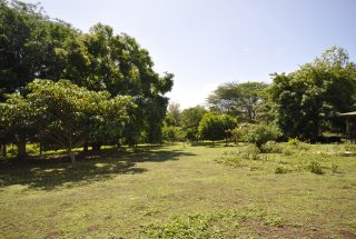 Land on the 3 Bedroom House for Sale West Of Arusha by Tanganyika Estate Agents