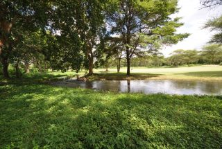 Stream running through the Property of the Three Bedroom House for Sale in Kili Golf by Tanganyika Estate Agents