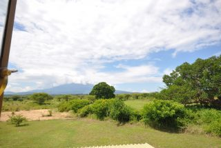 The Fields that surrounds the Three Bedroom Home for Sale in Arusha by Tanganyika Estate Agents