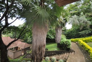 Garden of the 4 Bedroom Home for Sale in Njiro, Arusha by Tanganyika Estate Agents