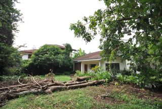 Backyard of the Four Bedroom Furnished Home in Njiro, Arusha by Tanganyika Estate Agents