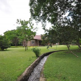 The Stream passing though the Three Bedroom House in Usa River's Dolly Estate Arusha by Tanganyika Estate Agents