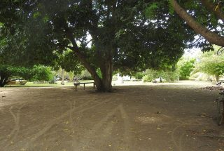 The Beachfront Property for Sale in Mwarongo by Tanganyika Estate Agents