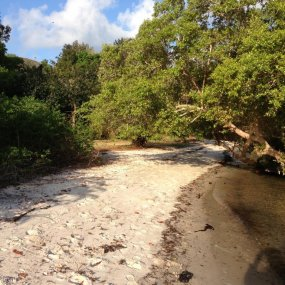 The Land on Marine Reserve for Sale on Mafia Island by Tanganyika Estate Agents