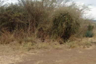 Seven Acres of Land for Sale in Mateves