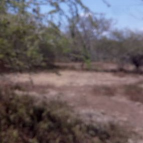 7 Acres of Land for Sale in Mateves